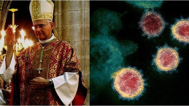 Links: Bischof Roland von Mangouste35 / CC BY-SA (https://creativecommons.org/licenses/by-sa/3.0) / Rechts: Coronavirus unter dem Elektronenmikroskop von NIAID Rocky Mountain Laboratories (RML), U.S. NIH / Public domain